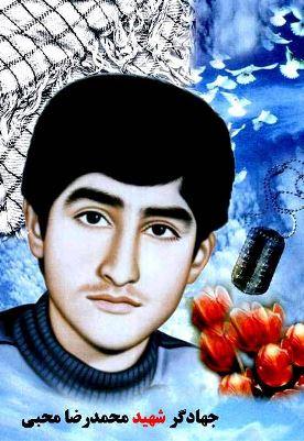 شهید محمدرضا محبی